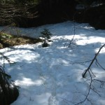 Snow patches on Elk Mountain Trail